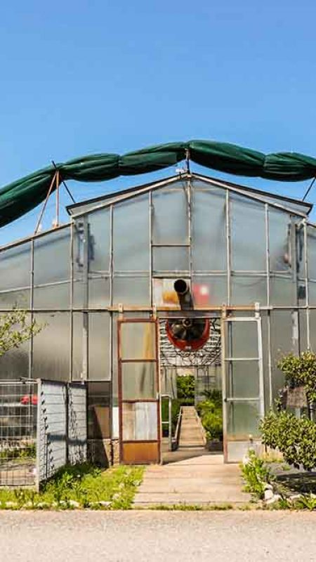 L'azienda Agricola Colombi, presso Fondobrugarolo